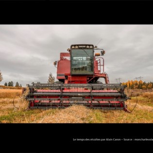 particularites-agriculture-charlevoix-berthier-lessard
